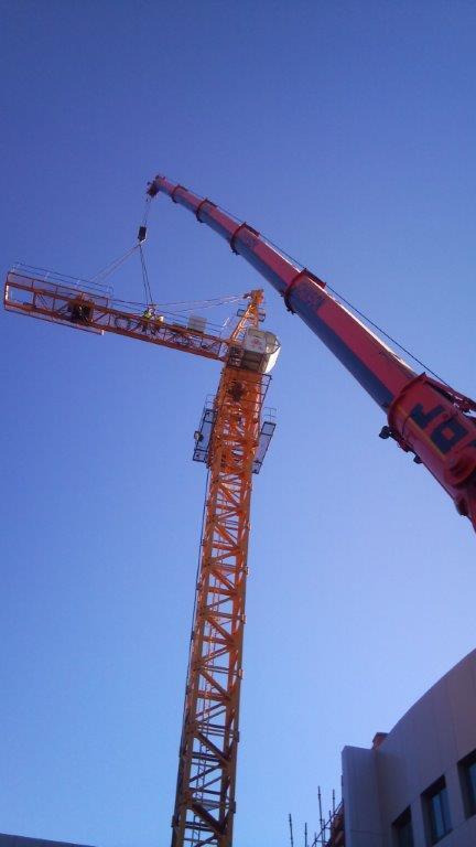 Crane85