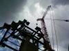 Crane41