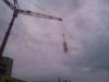 Crane79