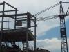 Crane89